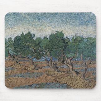 Olive Grove by Vincent Van Gogh Mousepad