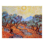 Olive Grove  by Vincent van Gogh Poster