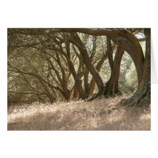 Olive Grove Stationery Note Card