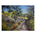 Olive Grove in Autumn Sunlight Poster