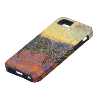 Olive Grove, Orange Sky by Vincent van Gogh iPhone SE/5/5s Case