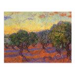 Olive Grove, Orange Sky by Vincent van Gogh Post Cards