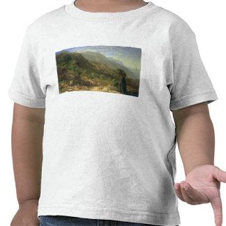 Olive Groves at Varenna, Lake Como, Italy, 1861 (o T Shirts
