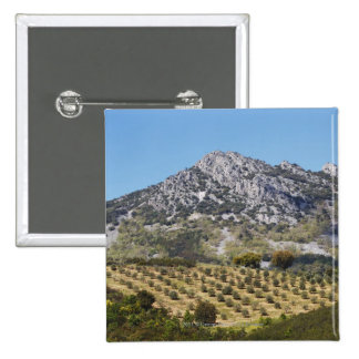 Olive Groves 2 Inch Square Button