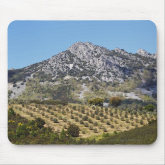 Olive Groves Mouse Pad