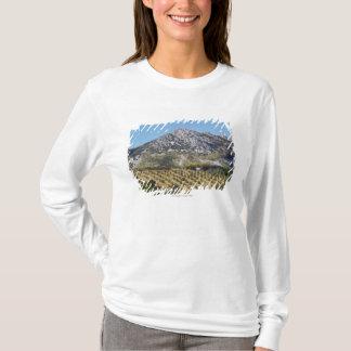 Olive Groves T-Shirt