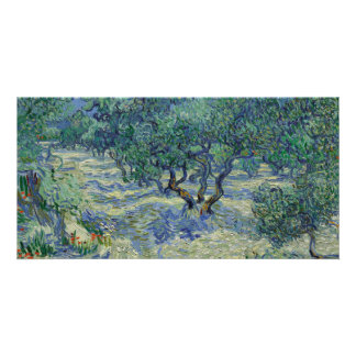 Olive Orchard by Vincent Van Gogh Card