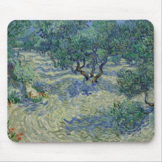 Olive Orchard by Vincent Van Gogh Mousepads