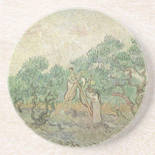 Olive Picking by van Gogh, Vintage Impressionism Beverage Coasters