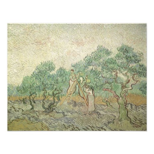 Olive Picking by van Gogh, Vintage Impressionism Announcement