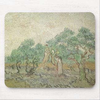 Olive Picking by van Gogh, Vintage Impressionism Mousepads