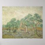Olive Picking by van Gogh, Vintage Impressionism Print