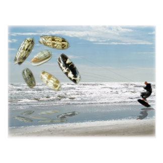 Olive Shells pulling boogie boarder Post Cards