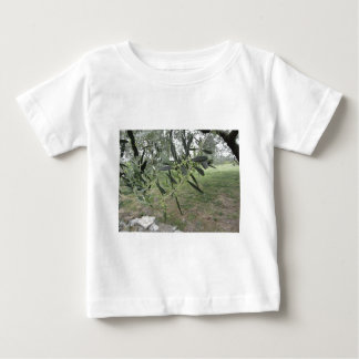 Olive tree branches with first buds . Tuscany, Ita Baby T-Shirt