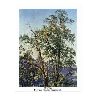Olive Tree By Iwanow Alexander Andrejewitsch Postcard
