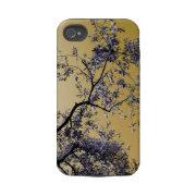 olive tree casematecase