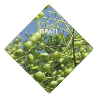 Olive Tree in Israel Graduation Cap Topper