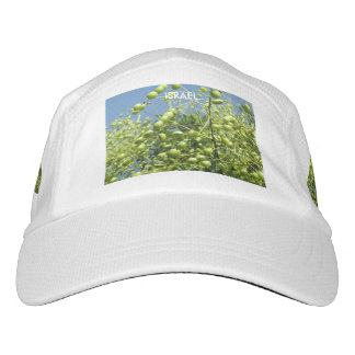 Olive Tree in Israel Hat