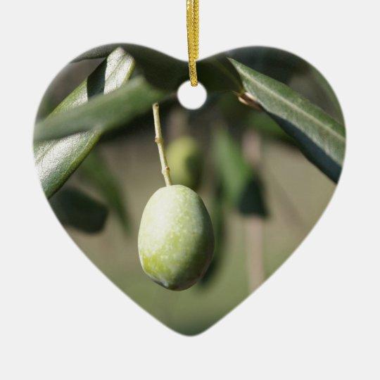 Olive tree in Italy Ceramic Ornament