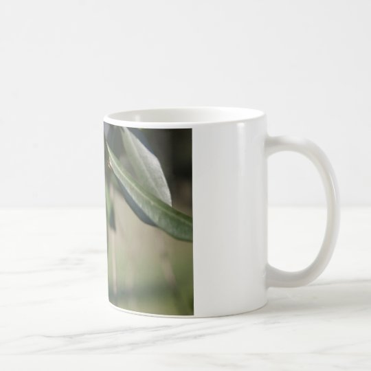 Olive tree in Italy Coffee Mug