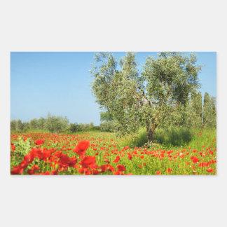 Olive tree in poppy field rectangular sticker