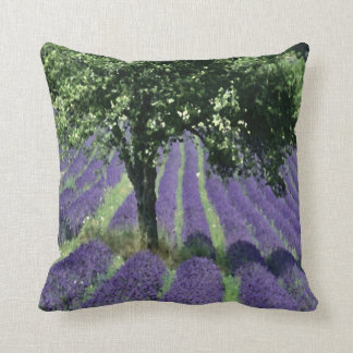 Olive Tree Pillows
