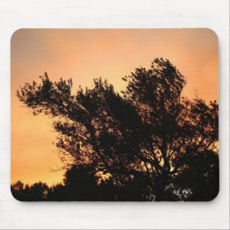 Olive Tree Silhouette At Sunset Mouse Pad