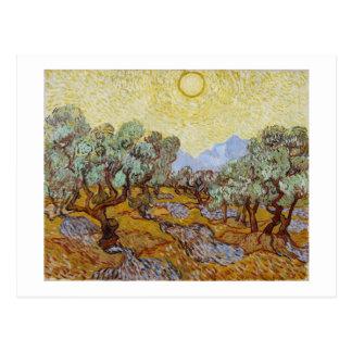 Olive Trees, 1889 (oil on canvas) Postcard