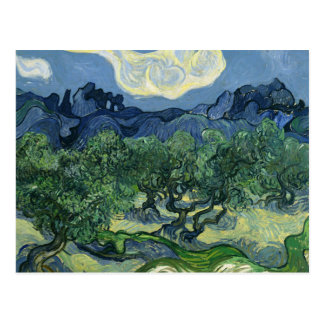 Olive Trees by Van Gogh Postcard