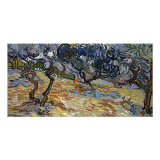 Olive Trees by Vincent Van Gogh Picture Card