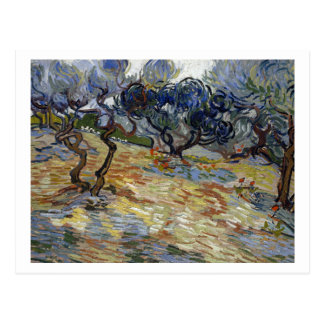 Olive Trees by Vincent van Gogh Postcard