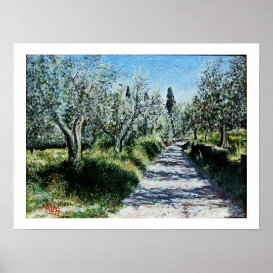 OLIVE TREES IN RIMAGGIO POSTER