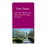 OLIVE TREES IN RIMAGGIO SHIPPING LABELS