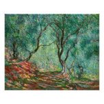 Olive Trees in the Garden Poster Print