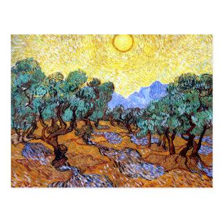 Olive Trees in the Sun Van Gogh Postcard