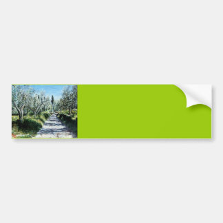 OLIVE TREES IN TUSCANY BUMPER STICKER