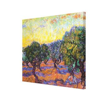 Olive Trees, Orange Sky  Van Gogh Vincent Canvas Print