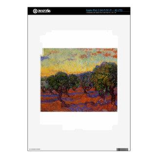 Olive Trees - Vincent Van Gogh iPad 3 Decals