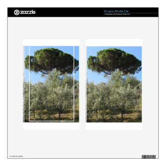 Olive trees with pine tree as background decals for kindle fire