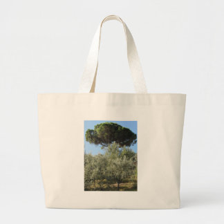 Olive trees with pine tree as background large tote bag