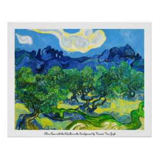 Olive Trees with the Alpilles in the Background Poster