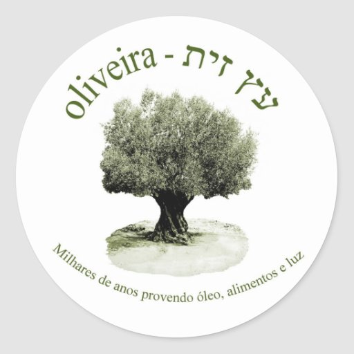 Oliveira, luz del óleo e del provendo de Milhares Pegatina Redonda