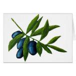Oliven Grußkarte