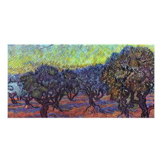 Olivenhain By Vincent Van Gogh Customized Photo Card