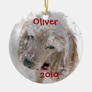 Oliver, 2010 ceramic ornament