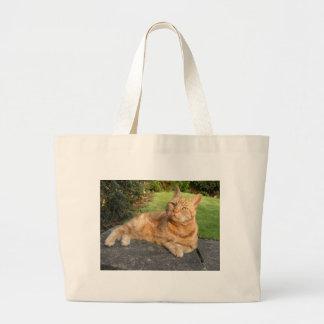 Oliver Cat Bags