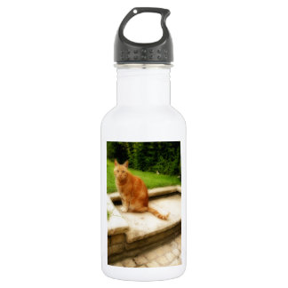 Oliver Cat Stainless Steel Water Bottle