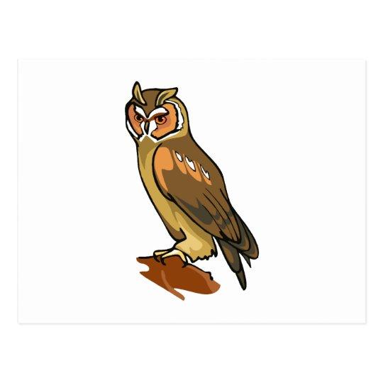 Oliver Owl Postcard