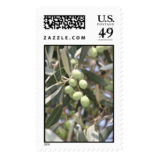 Olives in Rome Postage