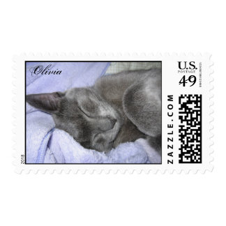 Olivia Adopted from a Shelter Stamp
